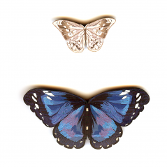 Butterfly Pins, 1991, polymer