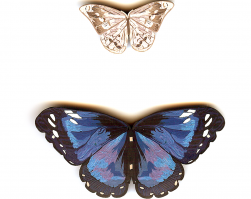 Butterfly Pins, 1991
